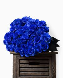 blue roses beautiful bouquet of blue roses online with delivery to czechia