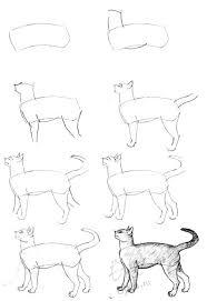imagenes a lapiz de gatos cómo dibujar un gato a lápiz con bocetos paso a paso