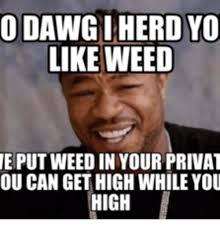 Sup Dawg Meme - o dawg i herd yo like weed eputweed in your privat ou can get high