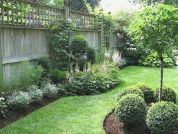 Backyard Privacy Ideas Backyard Privacy Landscaping Ideas Awesome 25 Trending Backyard