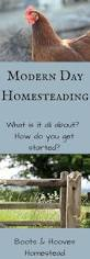 448 best 1 otg homestead thriving images on pinterest homestead