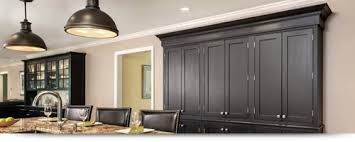 Floor To Ceiling Cabinet by Types Of Cabinets Which Is Best For You