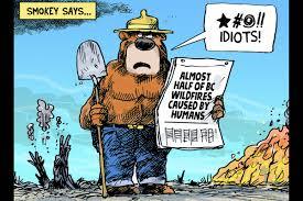 Wildfire Ladysmith Bc by Editorial Cartoon July 25 Nanaimo News Bulletin
