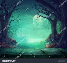 halloween photo background halloween background spooky forest dead trees stock photo