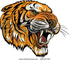 tigers saber toothed tiger stock vector 607421729
