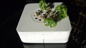 Click And Grow Refills Click And Grow Review The Hands Off Hydroponic Garden Gizmodo