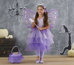 Butterfly Halloween Costumes Girls Butterfly Fairy Tutu Costume Pottery Barn Kids