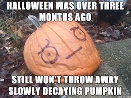 Awkward Seal Meme - look of disapproval awkward seal pumpkin meme on imgur