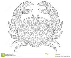 crab coloring book for adults vector stock vector image 68583828
