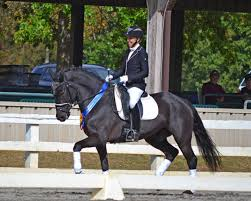 esdcta crowns its dressage champions at the horse park of new