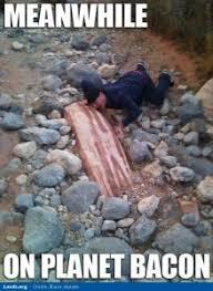 Funny Bacon Meme - bacon bacon bacon steelstacks
