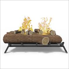 Real Flame Fireplace Insert by Interiors Amazing Convert Electric Fireplace To Gel Fuel Gel