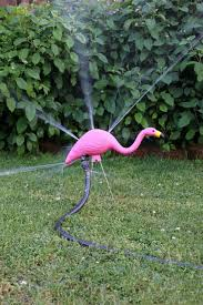 pink flamingo lawn ornaments fun projects with pink plastic flamingo lawn ornaments apartment