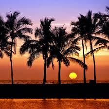 hawaii solar power solutions made simple vivint solar
