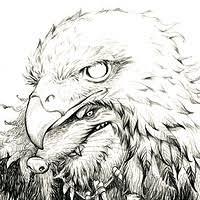 artstation marmot master sketch d xiao yi