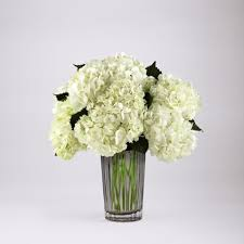 hydrangea bouquet ivory hydrangea bouquet kremp