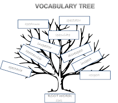 illustrating root words vocabulary tree ela word study and