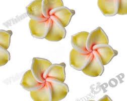 plumeria flower yellow plumeria etsy