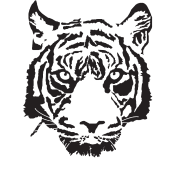 white tiger hoodie spreadshirt