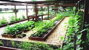 backyard vegetable garden design ideas u2013 home design inside