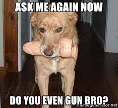 Dildo Meme - ask me again now do you even gun bro dildo dog meme generator