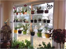 plant stand ideas inside shelf window designrulz 3 kitchen plant