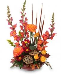 Flower Shops Inverness - illinois florist buy flowers from your local full service retail