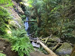 Fall Creek Falls Map Trestle Creek Falls Eugene Cascades U0026 Oregon Coast