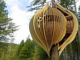 famous tree houses 26 best famoud treehouses images on pinterest tree houses