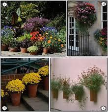 container garden ideas gardening
