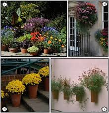 Container Garden Design Ideas Container Garden Ideas Gardening
