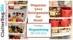 Organize Day Organized Refrigerator For Good Organizing Tip Of The Day Youtube