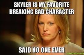 Meme Breaking Bad - bad week breaking bitch with skyler white the spinoff