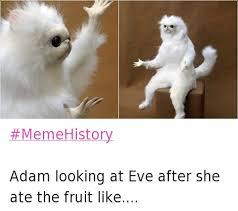 The Meme - the best of the meme history meme