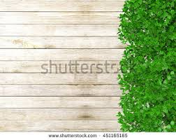 wooden leaves wall leaf wood stock images royalty free images vectors