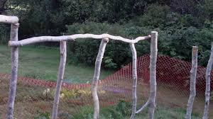 building a climbing bean pole fence trellis green beans youtube