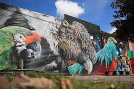 3d insects and giant birds the graffiti art of mantra scene360 parrots on outside wall graffiti by mantra rea