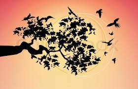 beautiful picture with the birds flying around the tree branches