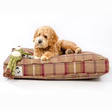 Puppy Beds Orthopaedic Dog Beds Lords And Labradors