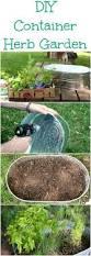 diy container herb garden