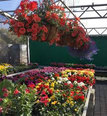 landscaping products retail and wholesale delivery of soil