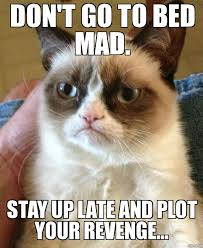 Stay In Bed Meme - grumpy cat don t go to bed mad stay up late and plot your