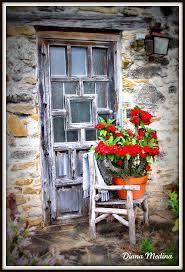 220 best flower door images on pinterest windows doorway and