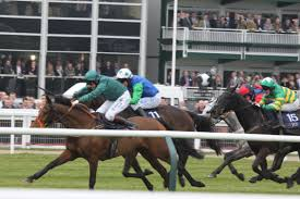 youtube lexus chase timico cheltenham gold cup key race trends 17 march 2017
