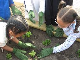 Benefits Of Urban Gardening - the benefits of building an urban garden at your