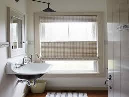 Blinds Bathroom Window Modern Concept Bathroom Window Blinds With Sheer Window Treatments