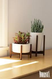 desk cactus 418 best case study ceramics images on pinterest case study