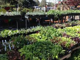 eastside gardens inc bend oregon