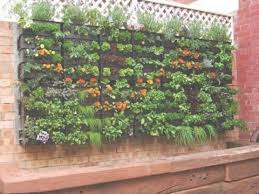 How To Build A Vertical Garden - diy ideas u2013 how to build a vertical herb garden from a wooden