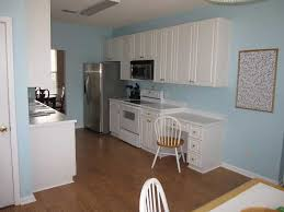 10 kitchen cabinet paint color ideas design and decorating ideas